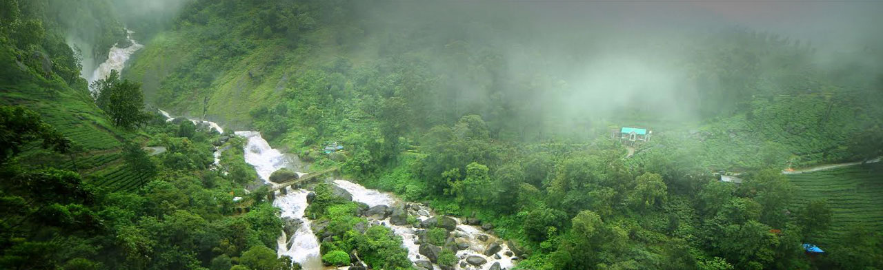 luxury resorts in munnar