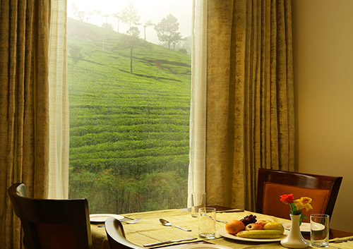 5 star hotels in munnar